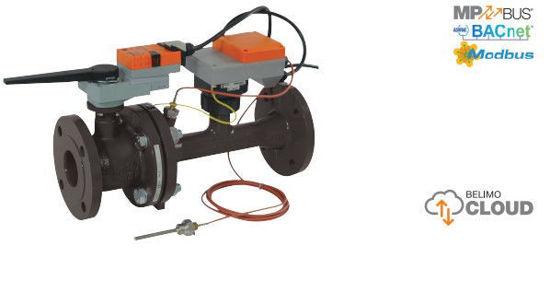 P6080W1100EV-BAC